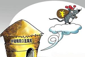 中储粮官员频落马背后 贪污腐败严重