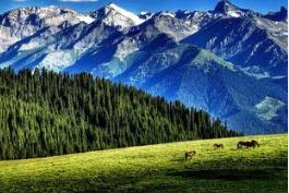 新疆旅游概念股