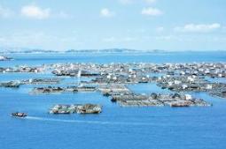 福建海洋经济概念股