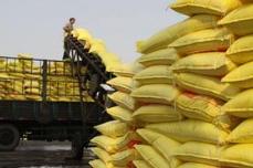 磷肥税率下调概念股