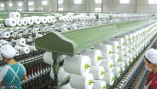 棉纺织概念股