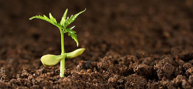 土壤修复概念股