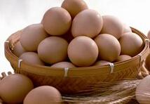 鸡蛋概念股