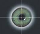眼动技术概念股