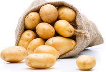 土豆涨价概念股