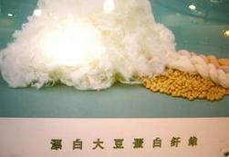 大豆蛋白纤维概念股