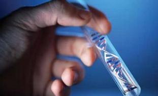 基因疗法概念股