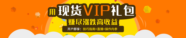 VIP���