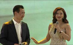 王健林万字长文宣布退出房地产市场