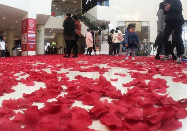 """浪漫满地! 杭州一商场用240万片""""花瓣""""铺路"""