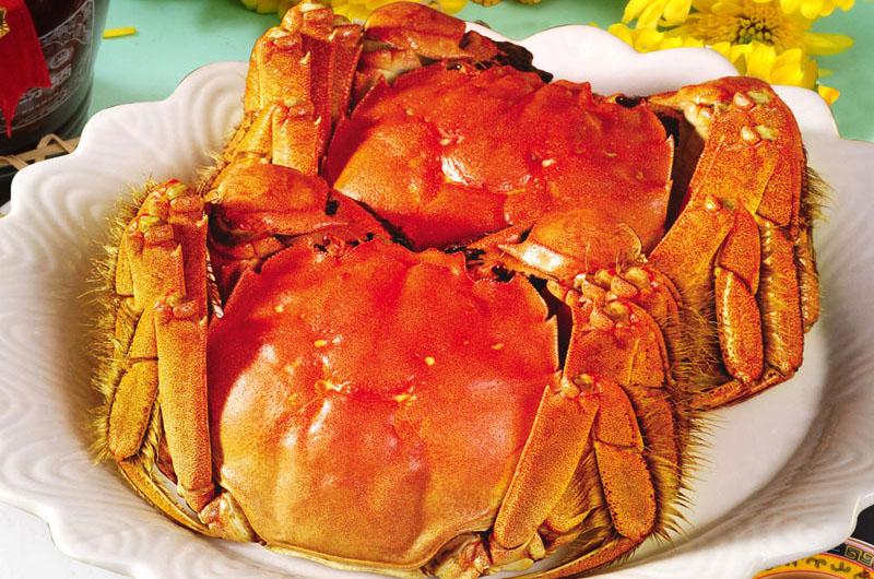 阳澄湖螃蟹图片_吃蟹不只阳澄湖湛江人带你吃螃蟹