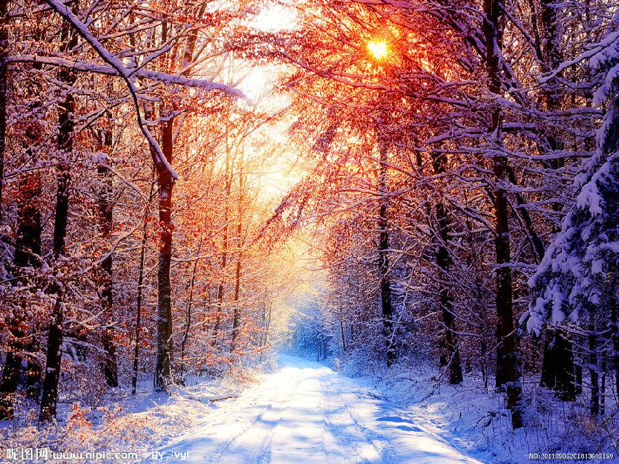 冬天里的那道风景(高清图)