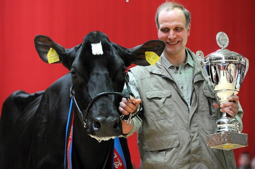 德国奶牛选美大赛冠军得主正式揭晓