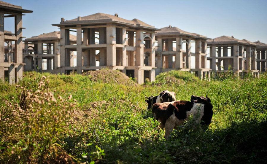 """别墅区"""".图为:在天津市宝坻区京津新城,在建的别墅区内荒草"""