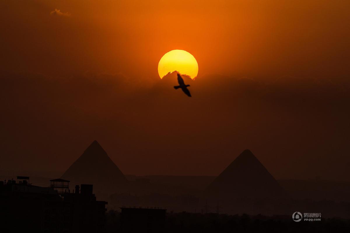 【飞跃金字塔】8月24日