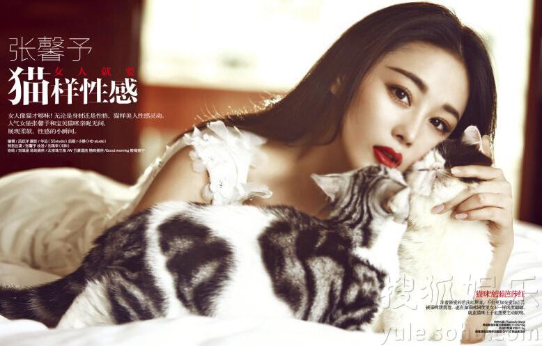 搜狐娱乐讯 近日,张馨予拍摄时尚大片,与猫咪一同出镜, 演绎猫性女人