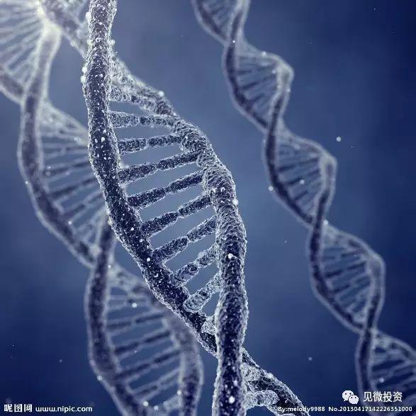 的基因的双螺旋结构.-投资基因测序行业 你应该关注哪些问题