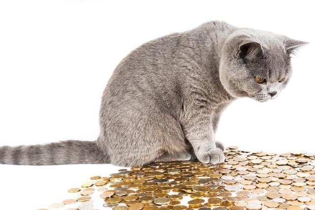总说富人思维能赚钱,但富人思维如何让你越来越穷的?