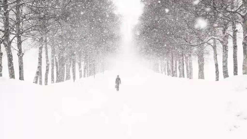 美股暴跌,全球市场迎来凛冽的寒冬!