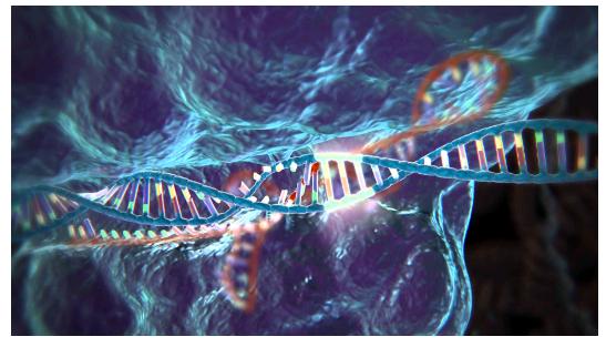 美国将启动1.9亿美元基因组编辑研究项目之视频奥雅图片