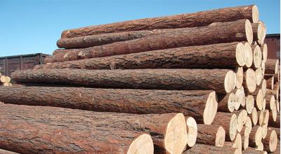 """木材价格已较高点""""脚踝斩"""" 分析师仍预计该商品将长期走强"""