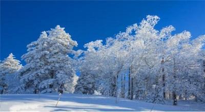 借力冬奥盛会 做强冰雪经济