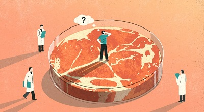 巴西食品加工企业Marfrig推出全球植物性肉类品牌