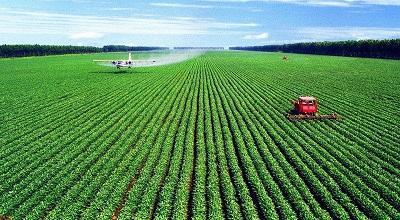 大力发展现代农业 打好产业振兴根基
