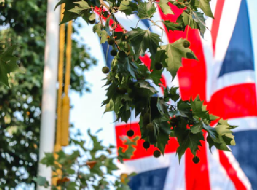 """[焦点]比英国退出欧盟更""""可怕""""的沉重数据今晚就要到来"""